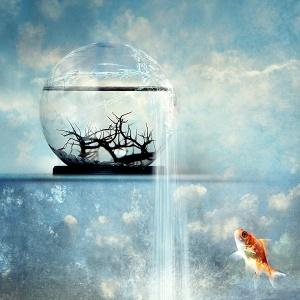 Change of Perspective_by kuschelirmel